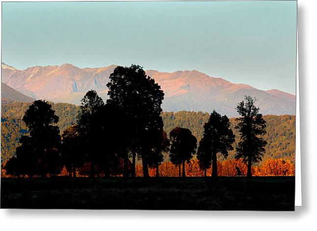 Greeting Card featuring the photograph New Zealand Silhouette by Amanda Stadther