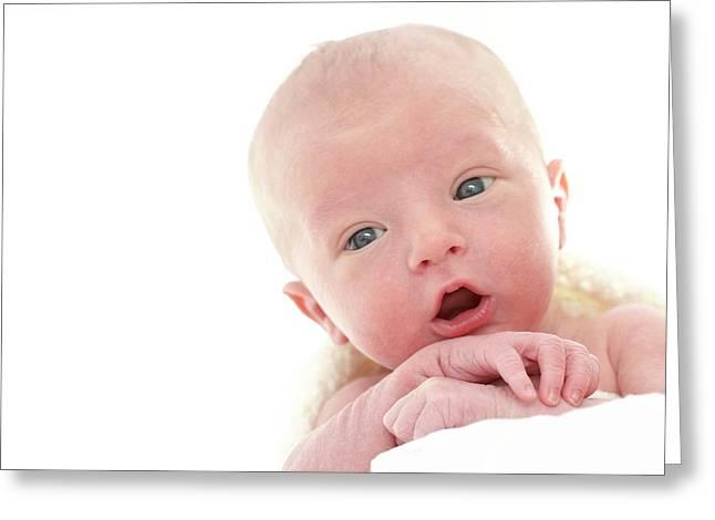 Newborn Baby Boy Greeting Card