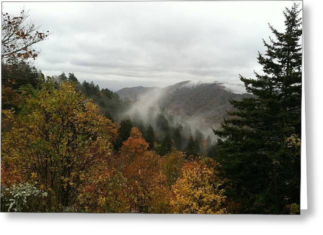 Newfound Gap Overlook Tennessee Greeting Card by Brian Johnson