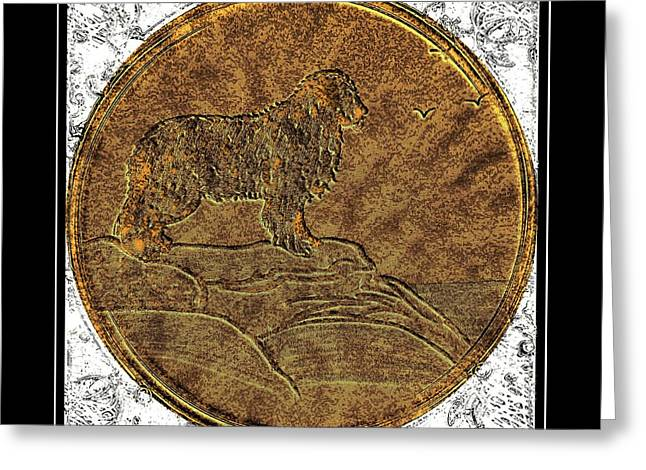 Newfoundland Dog - Brass Etching Greeting Card by Barbara Griffin