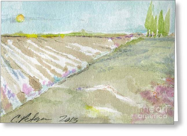 Newly Plowed Fields Oxnard California Greeting Card by Cathy Peterson