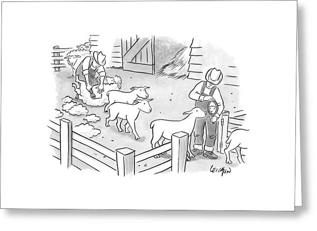 Newly-shorn Sheep Walk Out Of A Barn Greeting Card by Robert Leighton