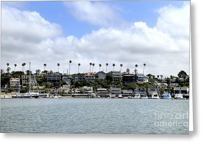 Newport Beach  Greeting Card by Timothy OLeary