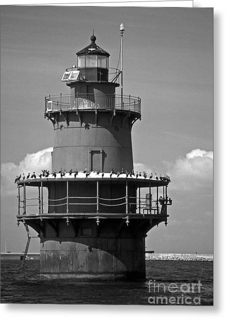 Newport News Middle Ground Greeting Card