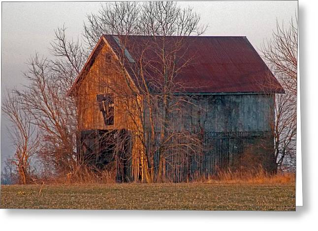 Next To A Subdivision Greeting Card by Skip Willits