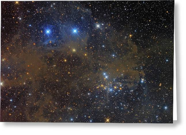 Ngc 1342 Open Cluster In Perseus Greeting Card