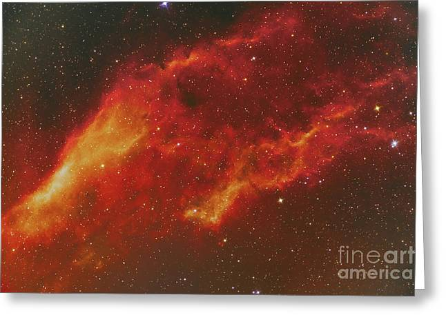 Ngc 1499, The California Nebula Greeting Card by Reinhold Wittich