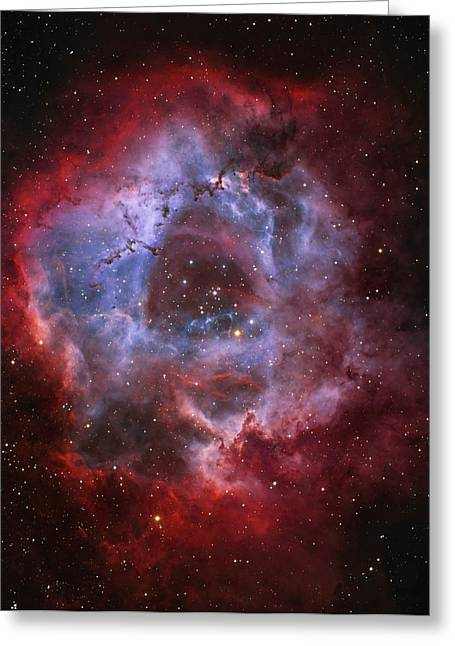 Ngc 2237, The Rosette Nebula Greeting Card by Lorand Fenyes