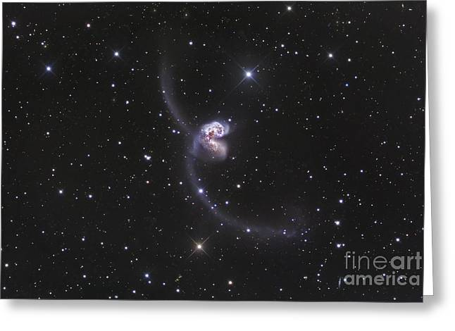 Ngc 4038-4039, Interacting Galaxies Greeting Card by Robert Gendler