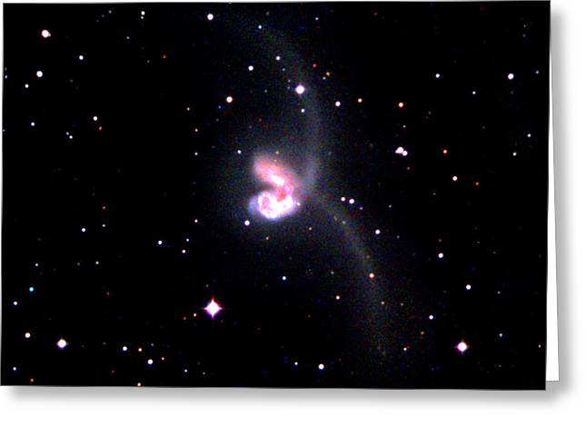 Ngc 4038 Greeting Card by John Chumack