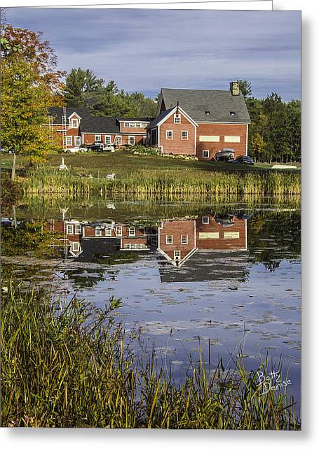 Greeting Card featuring the photograph Nh Farm Reflection by Betty Denise