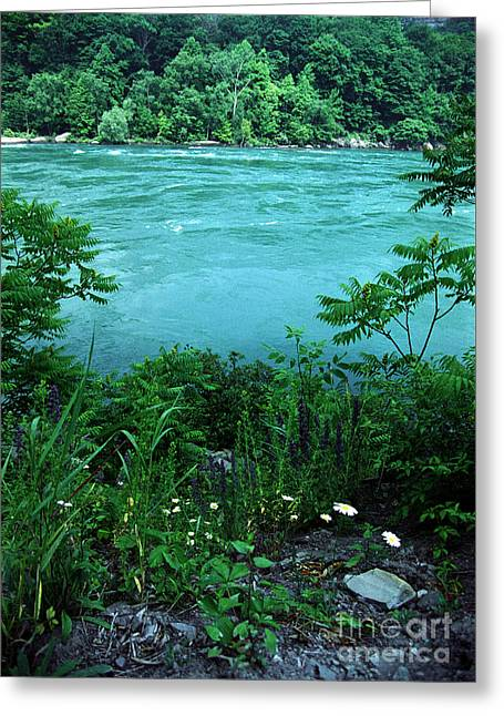 Niagara River Gorge  Greeting Card