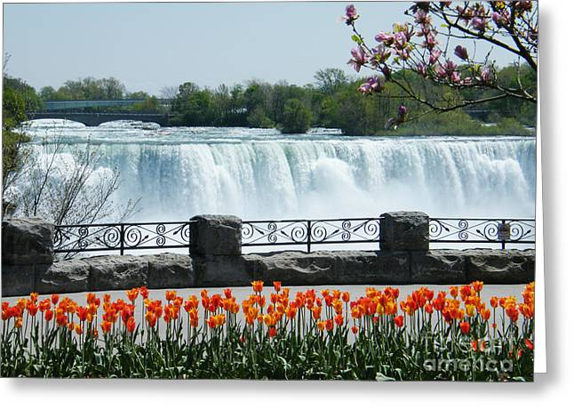 Greeting Card featuring the photograph Niagara - Springtime Tulips by Phil Banks
