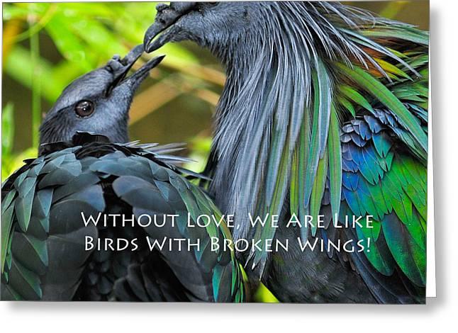 Nicobar Pigeon Greeting Card