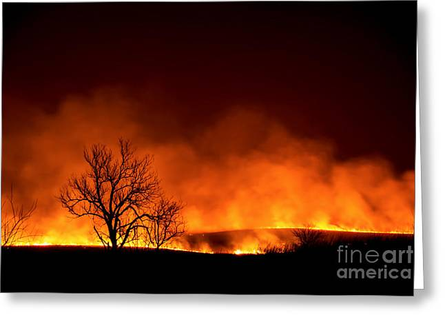 Night Burn Greeting Card by Jean Hutchison