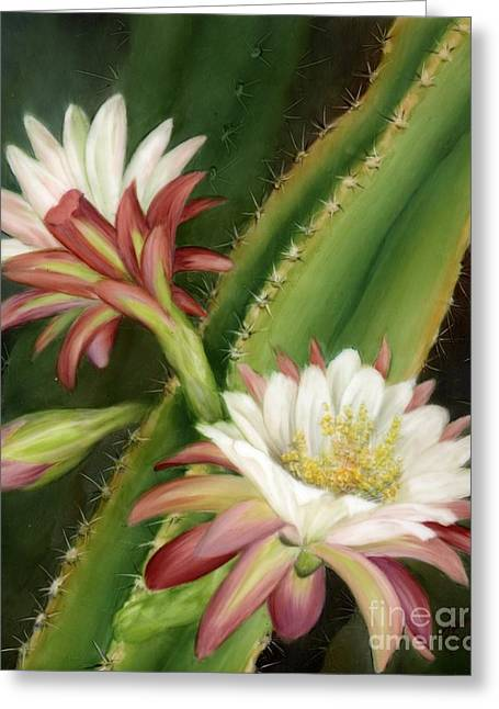 Night Cereus Greeting Card by Summer Celeste