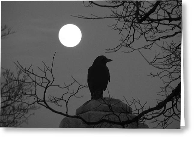 Night Crow And The Full Moon Greeting Card by Gothicrow Images