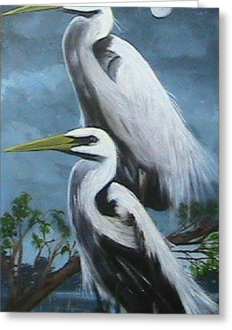 Night Egrets Greeting Card by Catherine Swerediuk