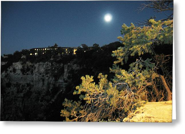Greeting Card featuring the photograph Night Glow by Sylvia Thornton