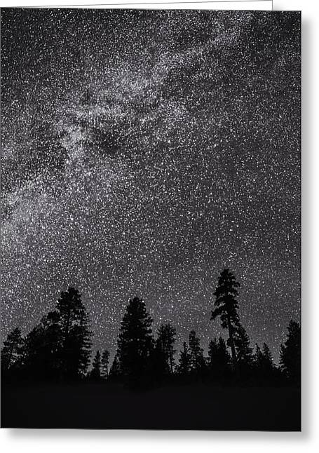 Night Serenity Greeting Card by Nancy Strahinic