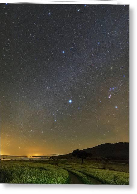 Night Sky In Dark Sky Reserve Greeting Card