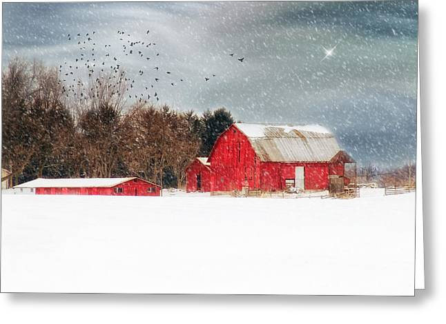 Night's Snow Dust Greeting Card by Mary Timman