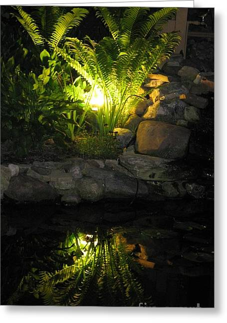Nighttime Reflection Greeting Card by Debbie Finley