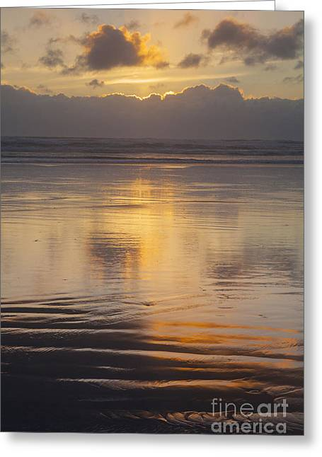 Ninety Mile Beach Greeting Card by Colin and Linda McKie
