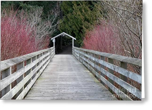 Nixon Trail Boardwalk Greeting Card by Val Carosella