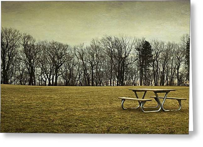 No More Picnics Greeting Card by Scott Norris