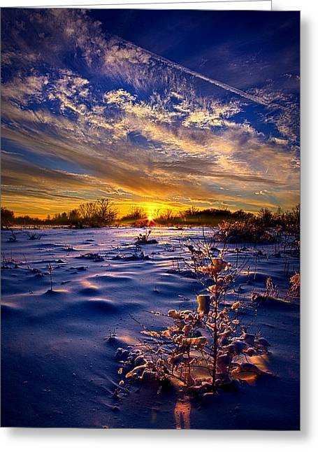 No Regrets Greeting Card by Phil Koch