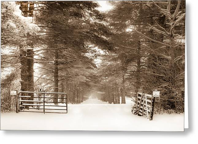 No Trespassing - Sepia Greeting Card
