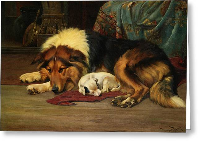 No Walk Today Greeting Card by Wright Barker