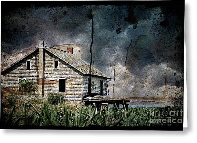 Nobody's Home Greeting Card by Lois Bryan