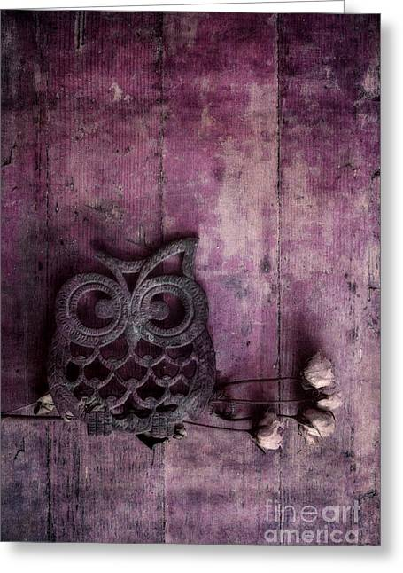Roses Greeting Cards - Nocturnal In Pink Greeting Card by Priska Wettstein