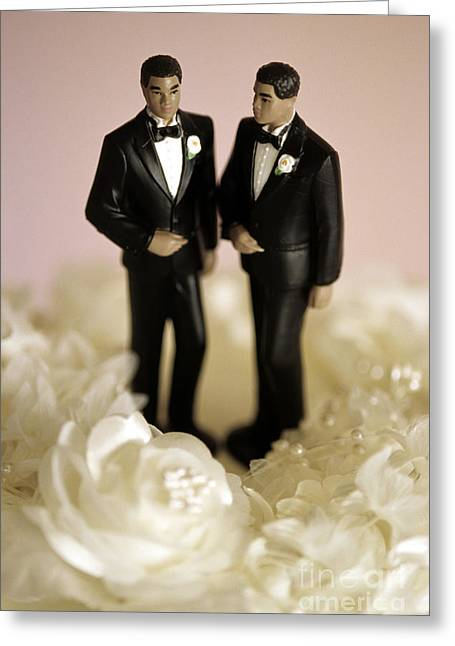 Non-traditional Wedding Ceremony Greeting Card by Jim Corwin