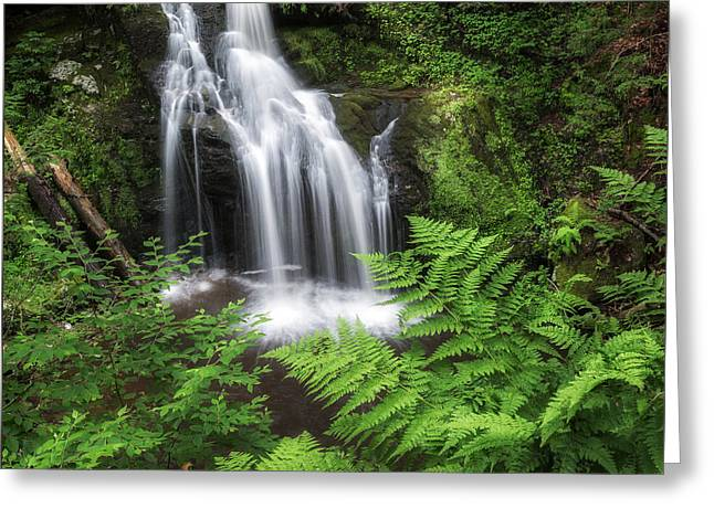 Nonnewaug Falls Square Greeting Card by Bill Wakeley