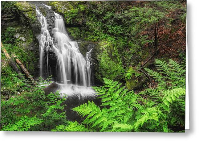 Nonnewaug Falls Summer Greens Greeting Card by Bill Wakeley