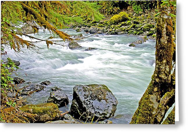 Nooksack River Rapids Washington State Greeting Card