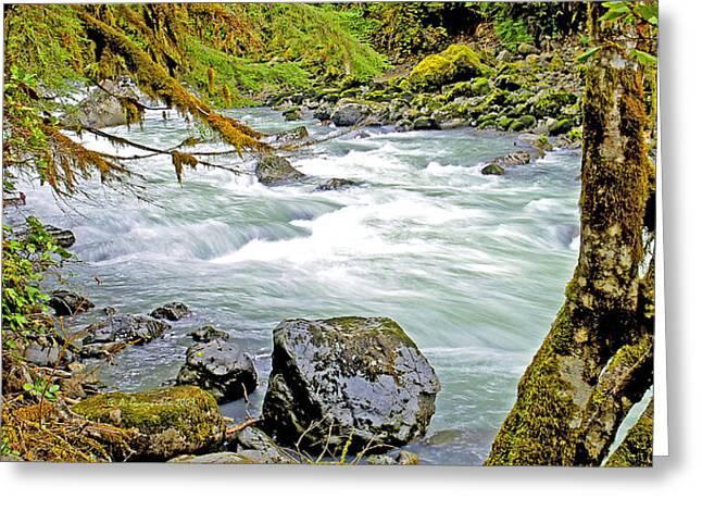 Nooksack River Rapids Washington State Greeting Card
