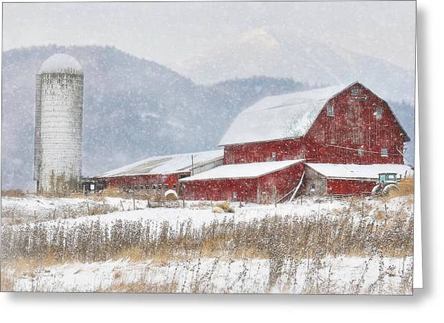 Nor'easter Greeting Card by Lori Deiter