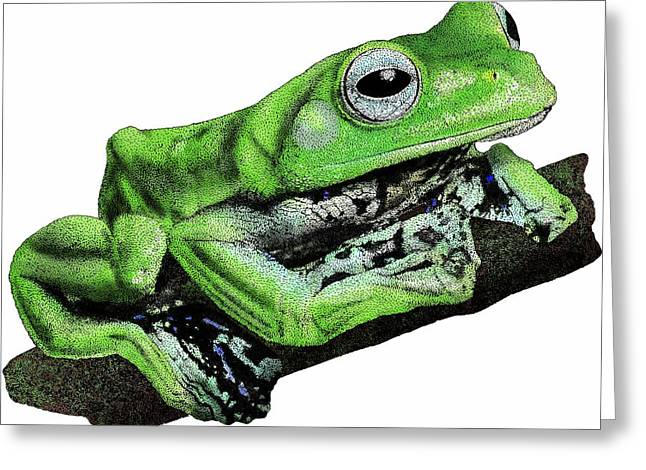 Norhayatis Flying Frog Greeting Card by Roger Hall