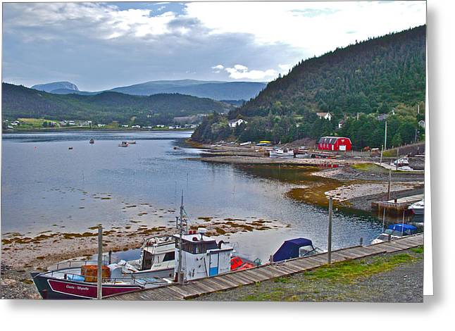 Norris Point Dock In Gros Morne Np-nl Greeting Card
