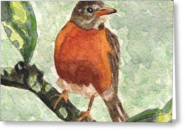 Greeting Card featuring the painting North American Robin by Angela Davies