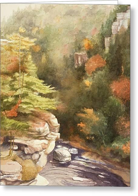 North Carolina Autumn Majesty Greeting Card