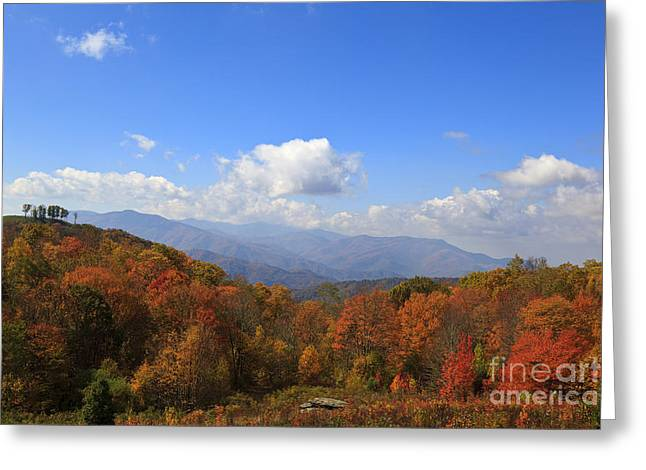 North Carolina Mountains In The Fall Greeting Card