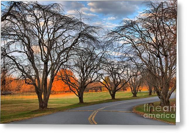 North Carolina Sloan Park Sunset Greeting Card by Adam Jewell