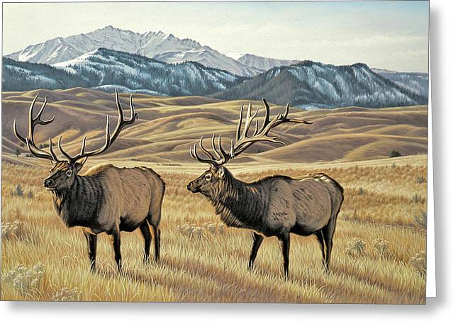 North Of Yellowstone Greeting Card