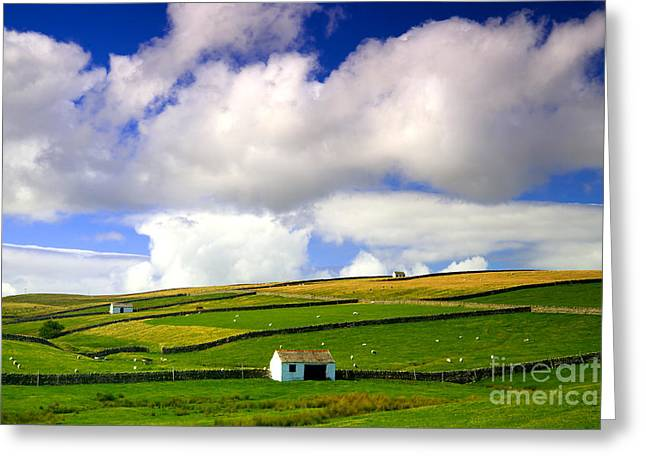 North Pennines Barns In Landscape Greeting Card