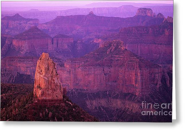 North Rim Grand Canyon Greeting Card